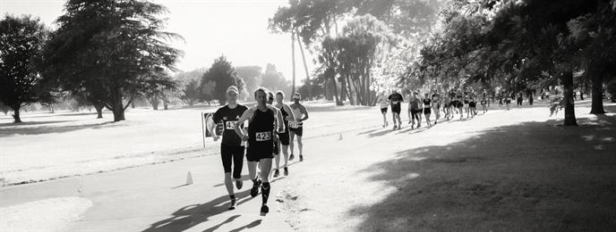 Sri Chinmoy 100 km, 50 km Ultra, 100km Teams