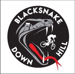 Black Snake Down Hill
