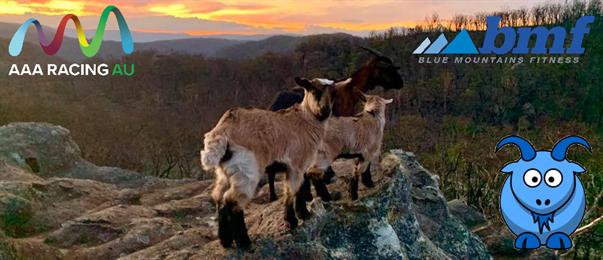 Blue Goat Backyard Marathons